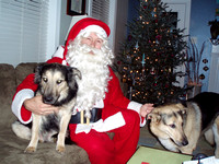 Cinco (on left), with Santa and Randi